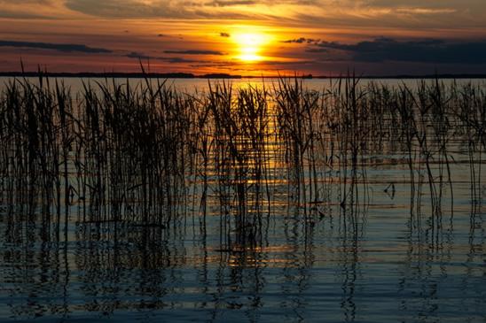 Solnedgång över Hjälmaren